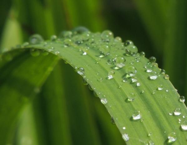 耐水性のイメージ画像